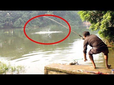 Carp fish catch at dhanmondi lake in bd | lakes near me