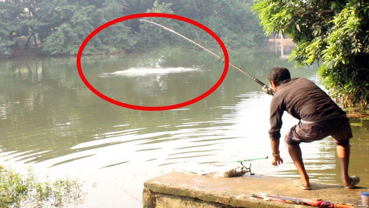 Carp fish catch at dhanmondi lake in bd lakes near me for Fishing lakes near me