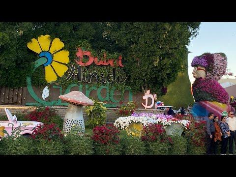 Dubai Miracle Garden 2020 – 2021.         #UAE #Dubai