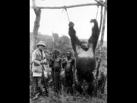 Как Европа Конго покоряла и местных усмиряла.