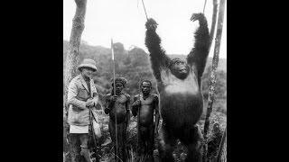 Как Европа Конго покоряла и местных усмиряла.+18