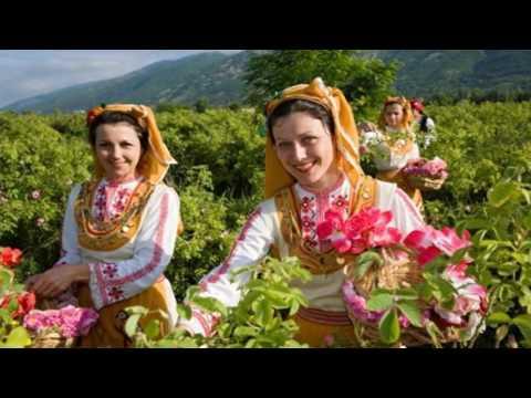 Rose Valley - Bulgaria (HD1080p)