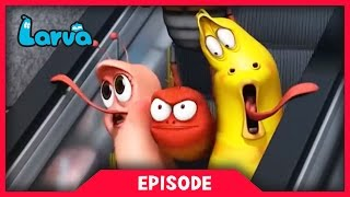 LARVA - KOREAN SUBWAY | Cartoon Movie | Cartoons For Children | Larva Cartoon | LARVA Official