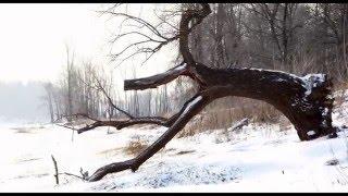 кросато природы пермского края(Это видео создано в редакторе слайд-шоу YouTube: http://www.youtube.com/upload., 2015-12-16T14:09:08.000Z)