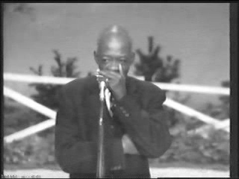 DeFord Bailey - Pan American Blues