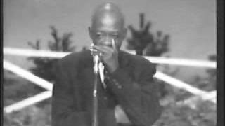 Imitating a train with a harmonica. DeFord Bailey - Pan American Blues