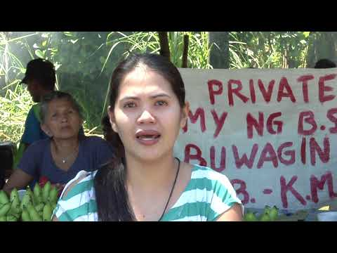 The Bangko Sentral ng Pilipinas (BSP) land controversy in Norzagaray, Bulacan