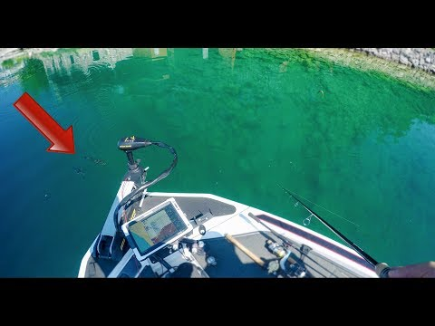 How To Catch Bass In Crystal Clear Water