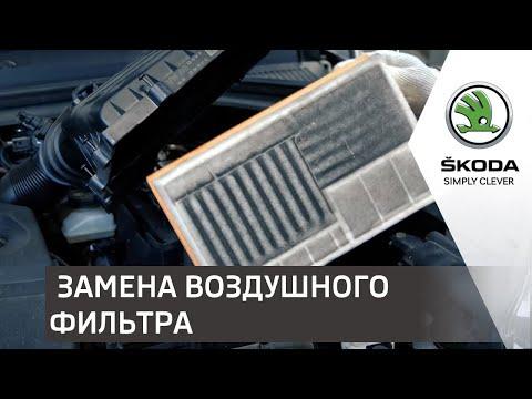 Мастер-класс по замене воздушного фильтра от Алексея Ланды