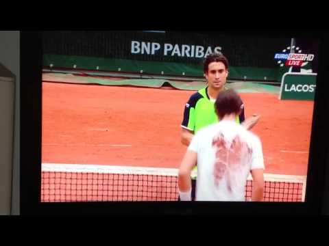 French Open 2013 Rafael Nadal vs David Ferrer - Championshi