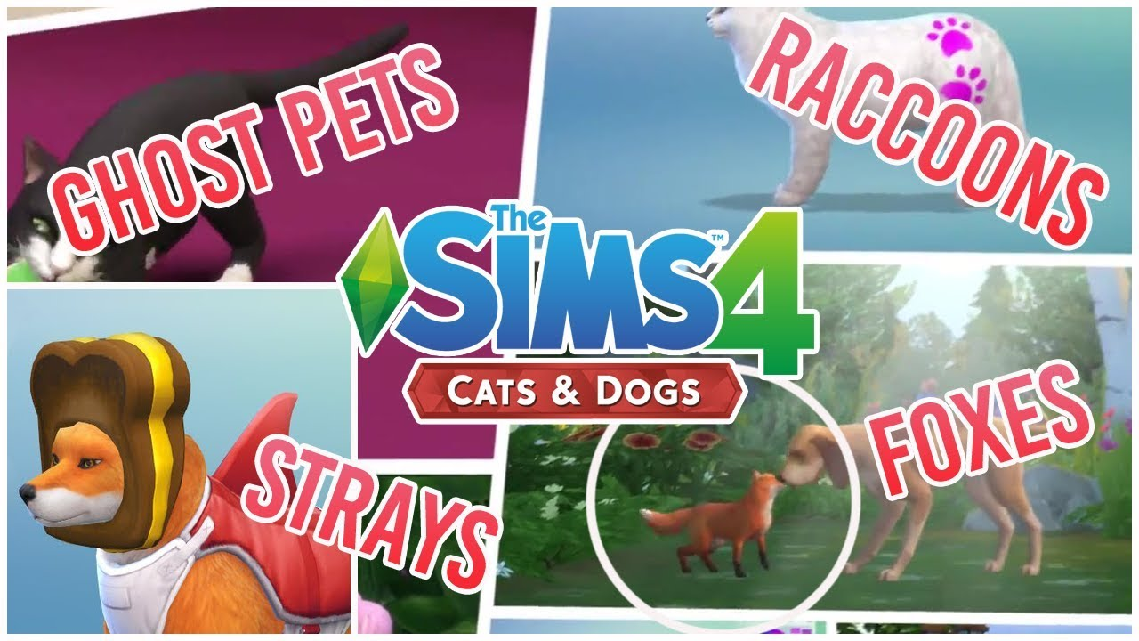 Sims  Cats And Dogs Ghost Pets