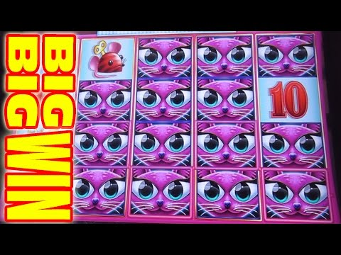 MAX BET BIG BIG WIN - OLD SCHOOL COOL [Slot Machine Max Bet Big Win Bonus]