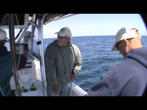 Flounder Fishing Offshore