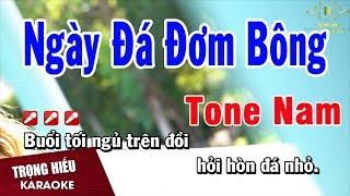 Karaoke Ngày Đá Đơm Bông Tone Nam Nhạc Sống | Trọng Hiếu