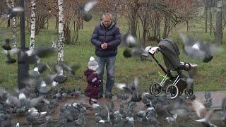 Смотреть видео На неделе в России произошло несколько случаев, когда люди приходили на помощь другим, рискуя жизнью онлайн