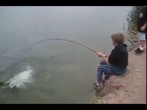 Pescadores de Plantao