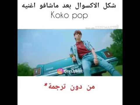 شكل الاكسوال لما شافو koko pop بترجمة وبدون ترجمة(يمثلني وبقوة😂)