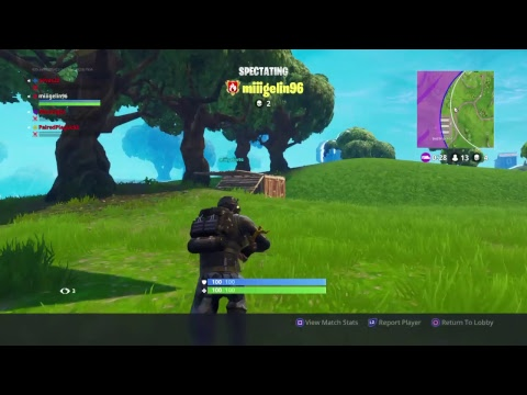 Fortnite Swedish/English/Spanish