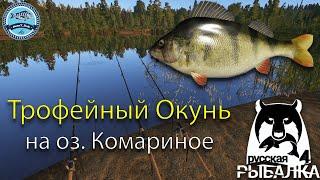 Русская Рыбалка 4 Трофейные Окунь на озере Комариное