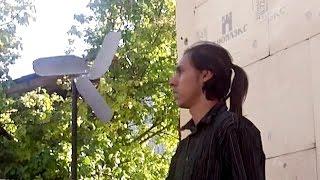 видео Какой генератор лучше купить  для частного дома и дачи