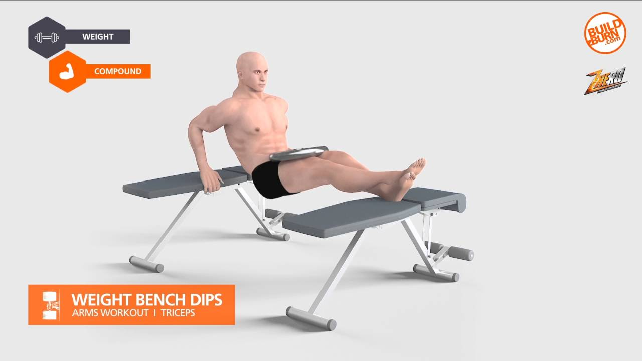 Bench Dips Workout Part - 29: ?????????????????? Weight Bench Dips