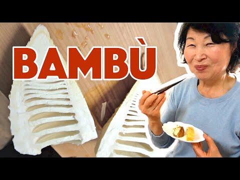 mangio-il-bamboo-in-giappone