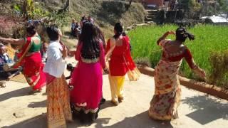 Panche baja 2074 babal dance