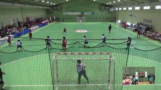 2019年IH ハンドボール 女子 1回戦 育英西(奈良)VS 横浜平沼(神奈川)