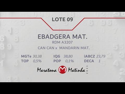 LOTE 09 Maratona Matinha
