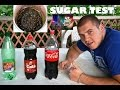 EXPERIMENT 43 - SUGAR TEST COCA COLA, COLA AND MINERAL WATER (1080p)