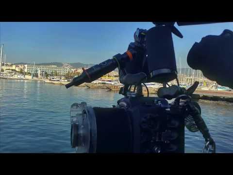 OrcaTorch D530V Snoot-macro Review By Ferran Sanchez