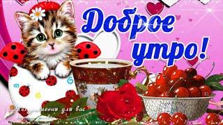 🌺☕️ Доброе Утро! Счастье - жить на свете, день встречая!🌺Пожелание Хорошего Дня для Друзей! 🌺