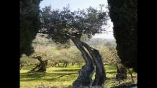Dove riposa il canto del vento by Wyrd Wail
