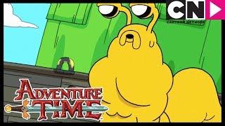 Время приключений | Любовь слизняков | Cartoon Network