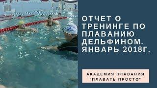 Отчет о тренинге по плаванию дельфином. Январь 2018г