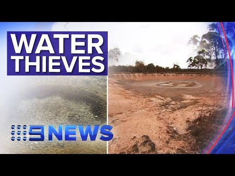 Queensland Drought Crisis So Dire People Are Stealing Water | Nine News Australia