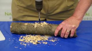 Bob Mulvihill, Ornithologist from The National Aviary in Pittsburgh, shows us how to create a suet log bird feeder for our feathery