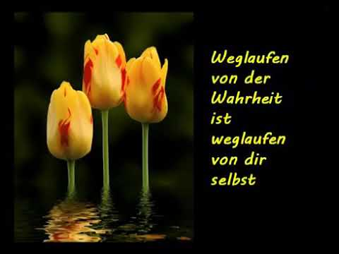 Entspannung Musik Natur Zitate Relax Music Nature Quotes