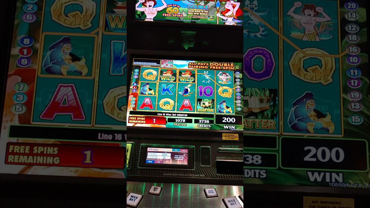 Van der valk tiel casino