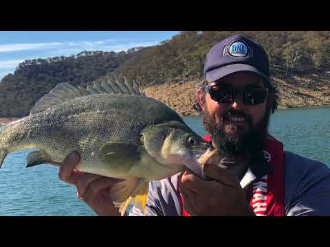 Burrinjuck Dam Fishing With Lowrance Live Sight