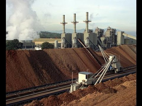 Almond Alliance of California Reports Win on Biomass