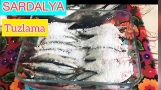 ŞİMDİ SARDALYA TUZLAMA ZAMANI   BALIK TURŞUSU NASIL YAPILIR ?  Balık Salamura Tarifi