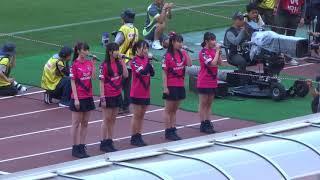 2019J1第13節 @ヤンマースタジアム長居 2019.5.25 セレッソ大阪vsFC東京...