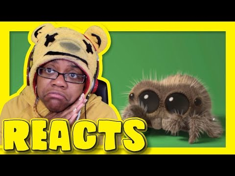 download Lucas The Spider Giant Spider | Animation Reaction