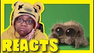 Lucas The Spider Giant Spider | Animation Reaction