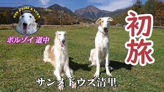 生後、5ヵ月で初めての旅に出ました。八千穂高原ではペット入山禁止だっ...