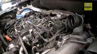 EGR (Exhaust Gas Recirculation) Cleaning Process