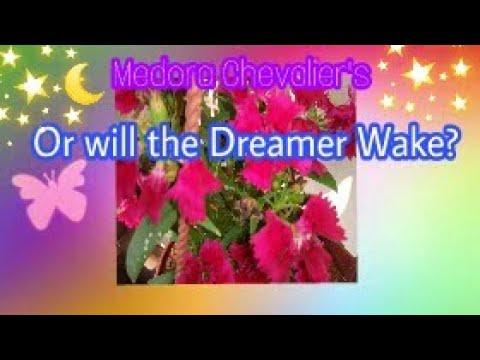 Or will the dreamer wake(Full Poem)P.J.Manilal