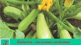 видео Брокколи - полезные свойства брокколи и вред брокколи, калорийность и противопоказания