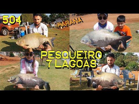 Pesqueiro 7 Lagoas no interior do Paraná e seus Tambas - Fishingtur na TV 504